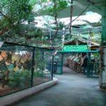 park-skulptur-i-tropikarium-150x150